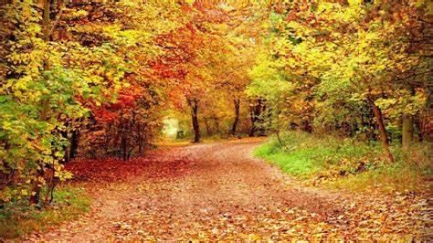 Idées de vacances d'automne pour les étudiants